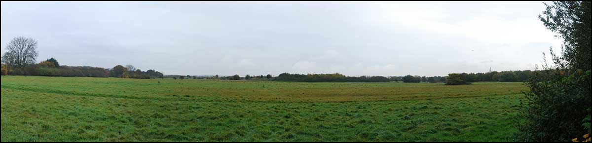 View of the site